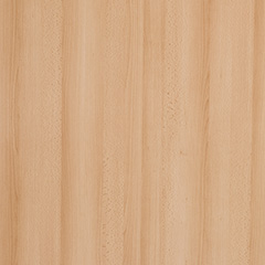 KAINDL Samerbergbuche Dekor 3876 I-Profil